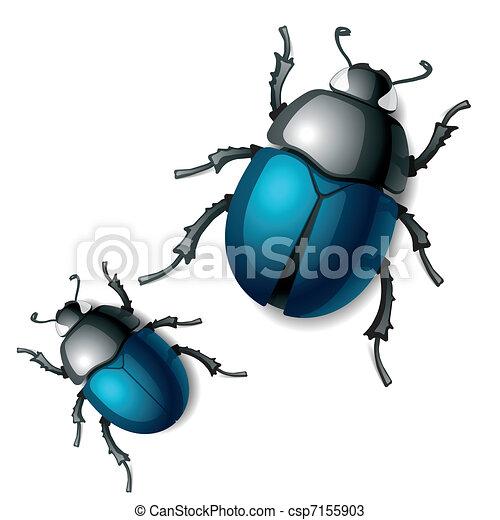Beetle - csp7155903