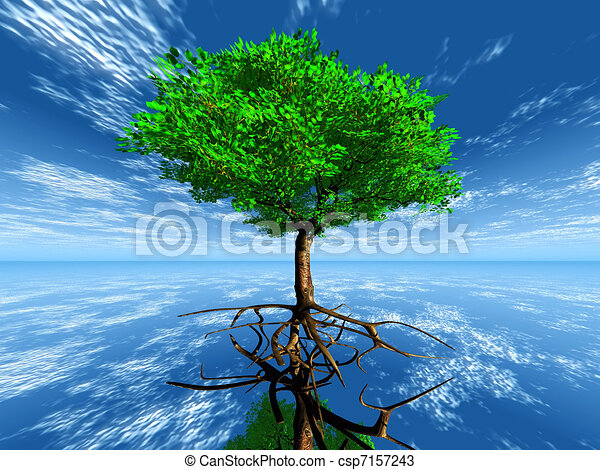 Tree with roots in the sky - csp7157243