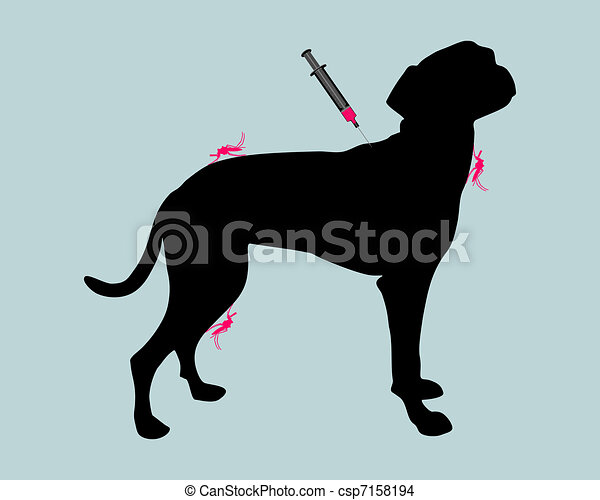 Dog gets an immunization against a disease of mosquito bites - csp7158194