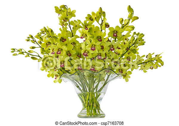 Orchid Arrangement Isolated - csp7163708