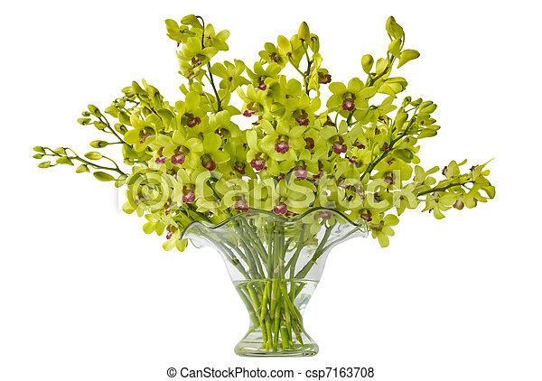 Orchid Arrangement Isolated - csp7163708