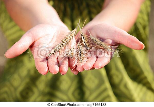 Crop on hand - csp7166133