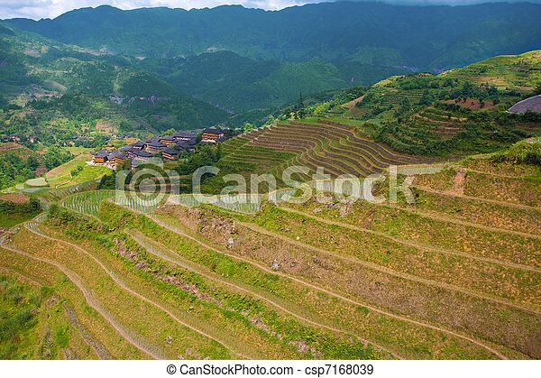 Dragon's Backbone Rice Terraces and Village - csp7168039