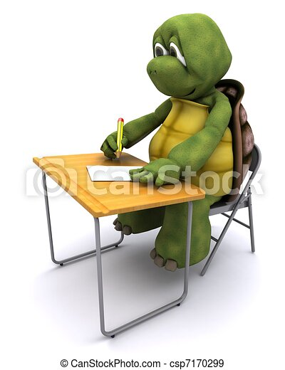 tortoise sat at school desk - csp7170299