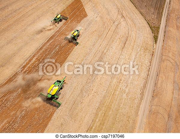 Three Combines in Grain Field - csp7197046