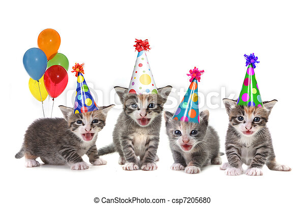 Birthday Song Singing Kittens on White Background - csp7205680