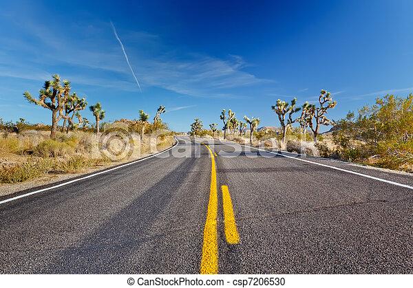 Joshua Tree National Park, Mojave Desert, California - csp7206530