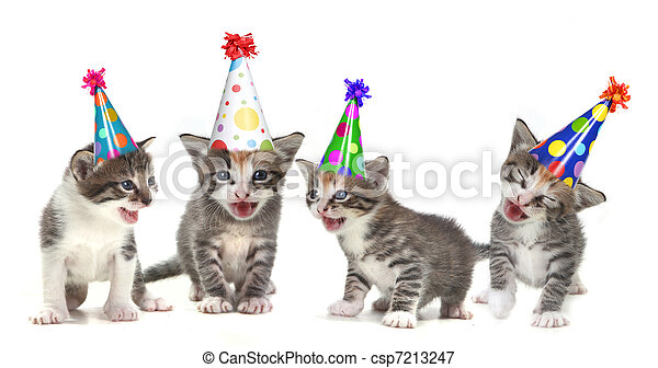 Birthday Song Singing Kittens on White Background - csp7213247