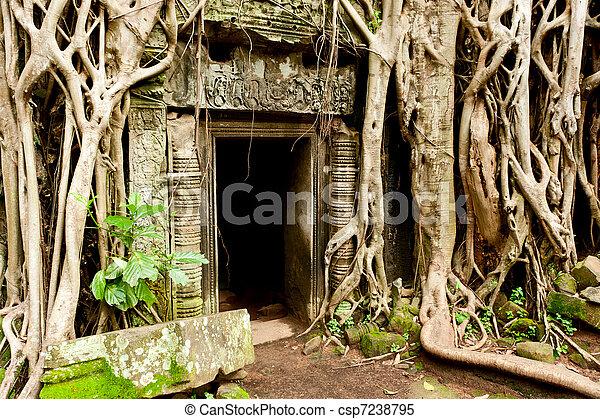 Ruins of the temples, Angkor Wat, Cambodia - csp7238795