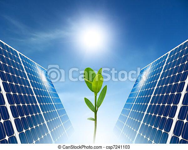 sonnenkollektoren, begriff, grün, Energie, Tafel - csp7241103