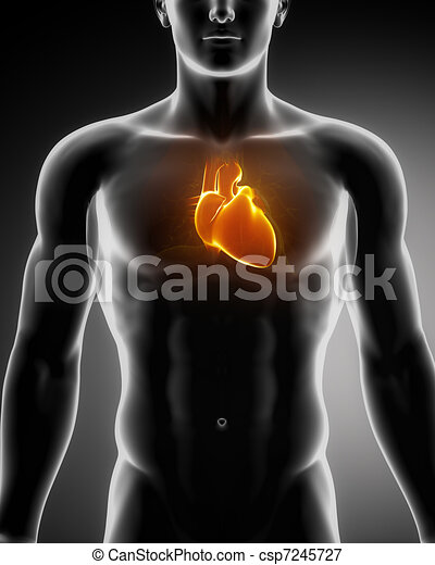 Human heart glowing in chest - csp7245727