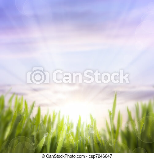 art abstract background of spring grass and sky - csp7246647
