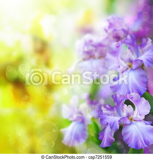 abstract spring flower Background - csp7251559