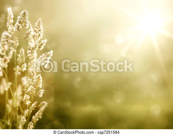 Art abstract autumn meadow background - csp7251584