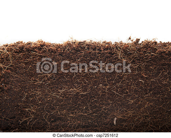 abstract Coconut Coir compost background