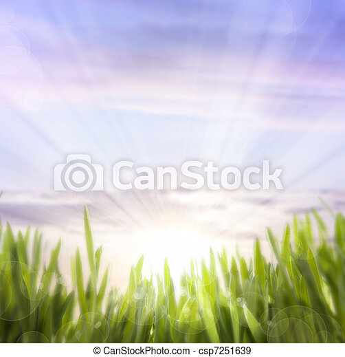 art abstract background of spring grass and sky - csp7251639