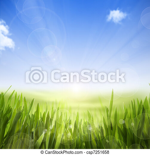 art abstract Spring nature background of spring grass and sky - csp7251658