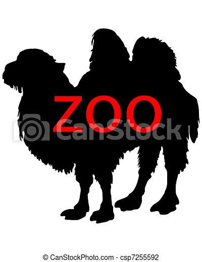 Zoo animals - csp7255592