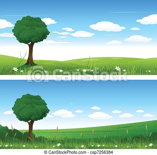 Nature summer landscape - csp7256384