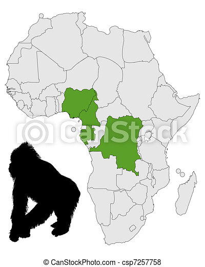 Africa Gorilla range - csp7257758