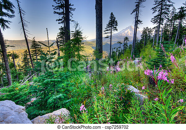 Beautiful Vista of Mount Hood in Oregon, USA. - csp7259702