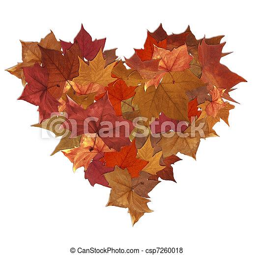 bilder von herbst herz bl228tter freigestellt autumn