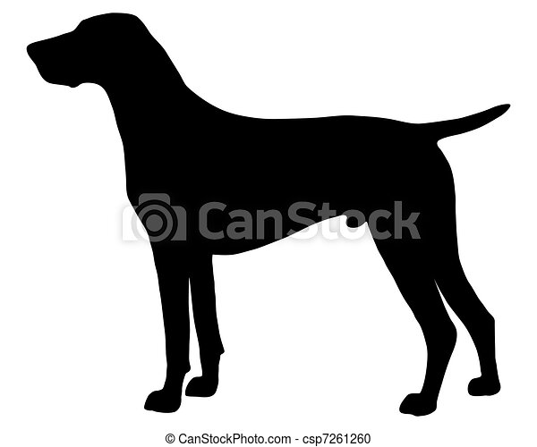 The black silhouette of a German Shorthaired Pointer - csp7261260