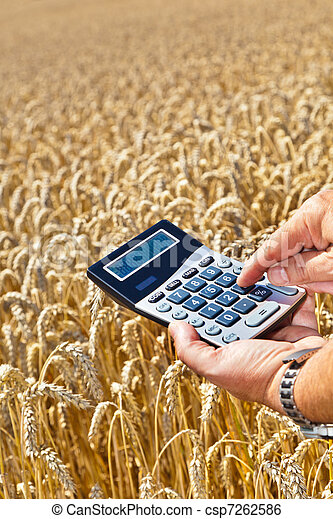 Farmers with a calculator on cereal box - csp7262586