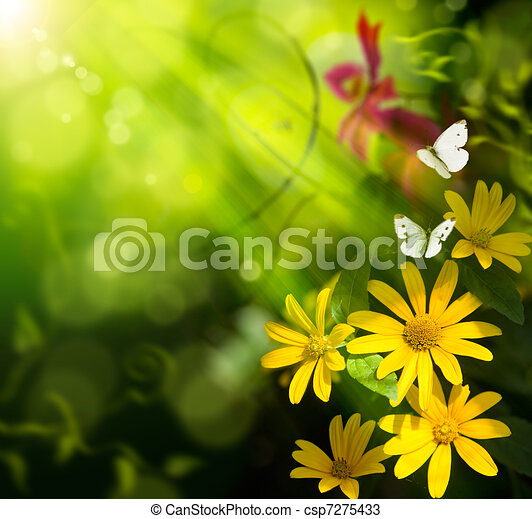 Abstract art summer background. Flower and butterfly - csp7275433