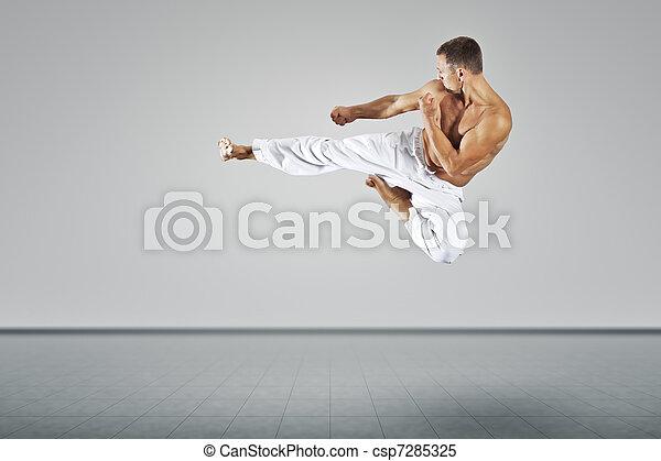 martial arts master - csp7285325