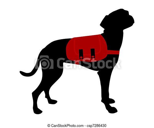 Dog with backpack - csp7286430