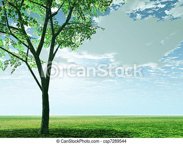 Spring scenery - csp7289544