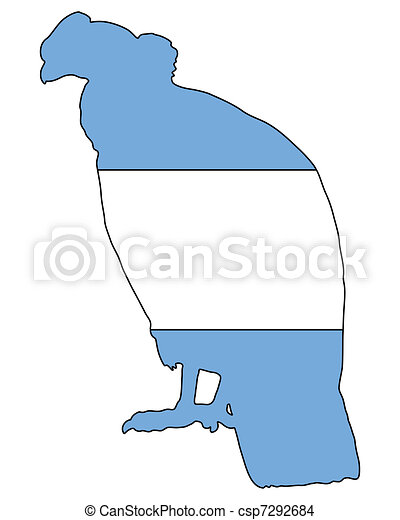 Stock options en argentina