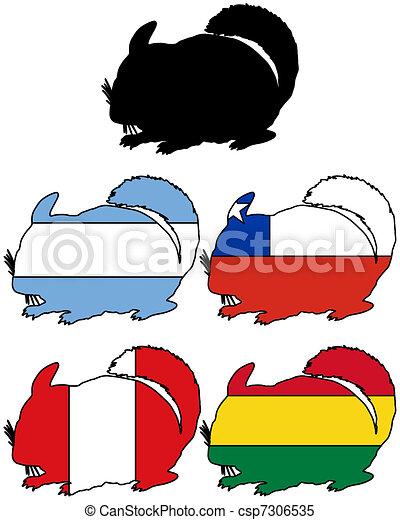 Chinchilla flags - csp7306535