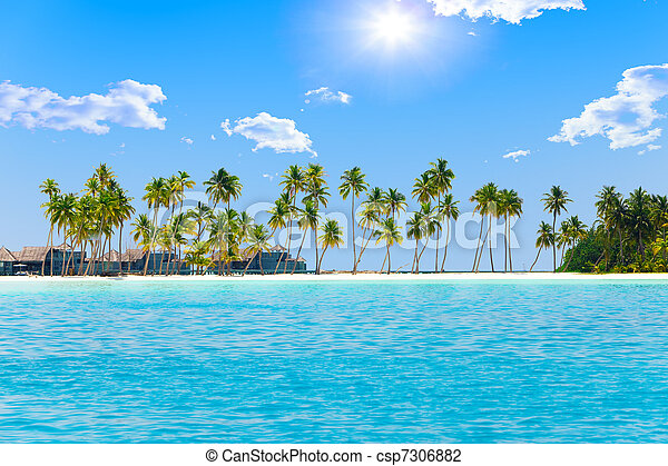 Palm trees on tropical island at ocean. Maldives. - csp7306882