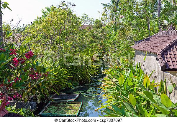 Tropical landscape. Indonesia. Bali. - csp7307097