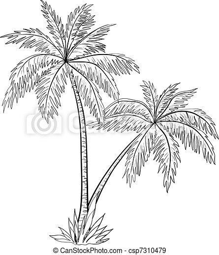 Palm trees, contours - csp7310479