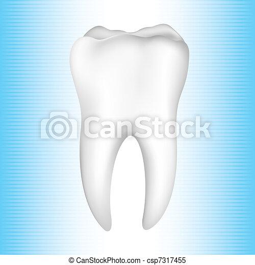 Healthy Teeth - csp7317455