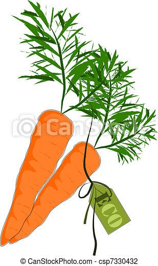 Big and health orange carrot - Vect - csp7330432