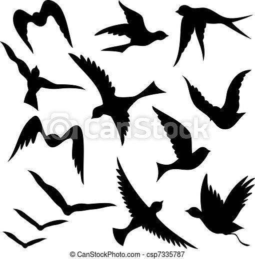 vector illustration af silhuetter flyve fugl   a s t i