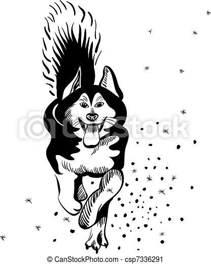 vector dog Alaskan Malamute breed - csp7336291