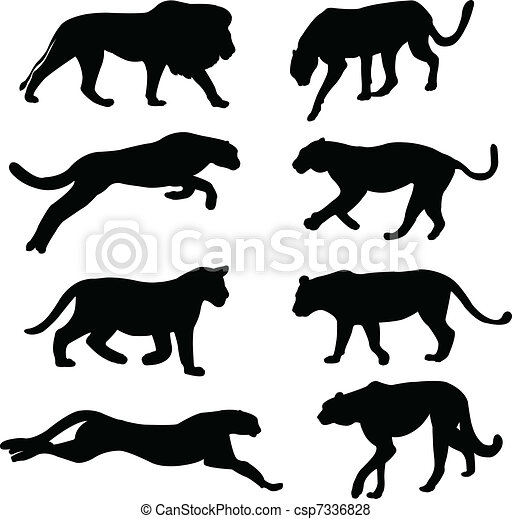Wild cats collection - csp7336828