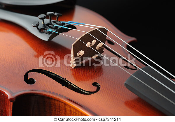 Violin detail, musical instrument, close up - csp7341214