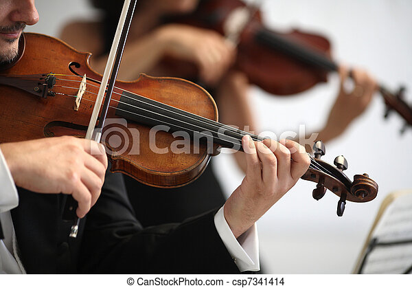 details of musicians to play a symphony  - csp7341414
