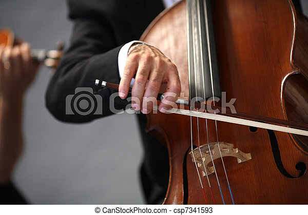 details of musicians to play a symphony  - csp7341593
