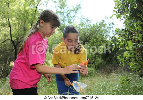 Bug Hunting in the Woods - csp7345124
