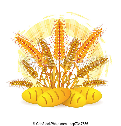 Wheat ears - csp7347656