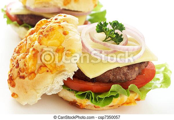 Tasty hamburgers - csp7350057