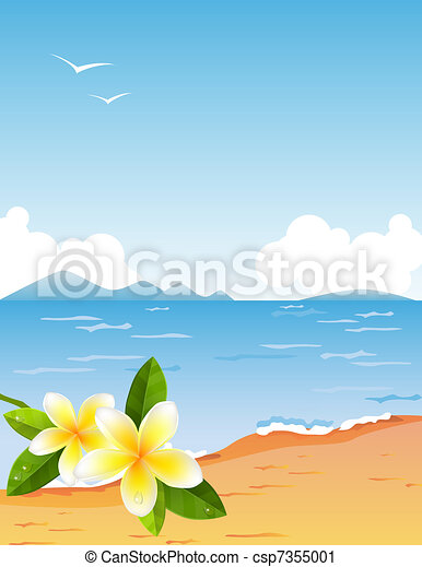 Tropic beach with small frangiapani branch - csp7355001