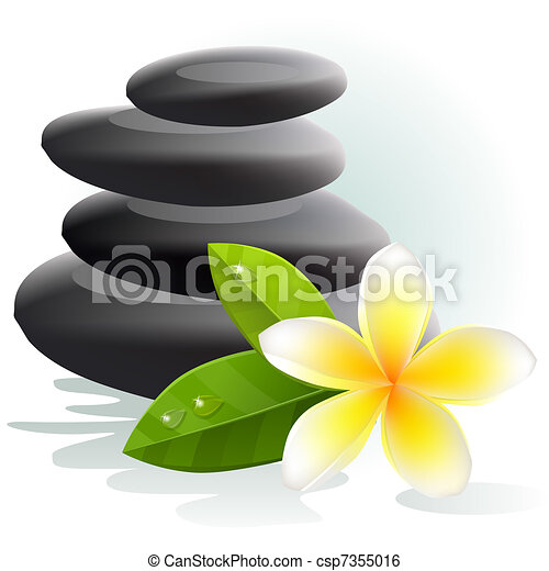 Vector plumeria flower and spa stones on white background stock